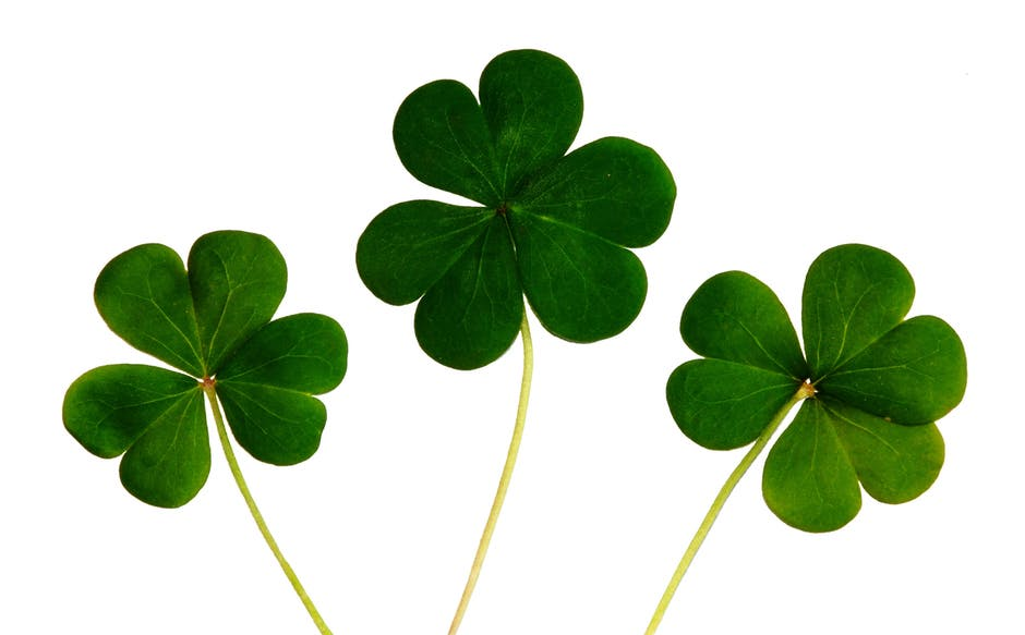 Lucky St. Patrick's Day Tips